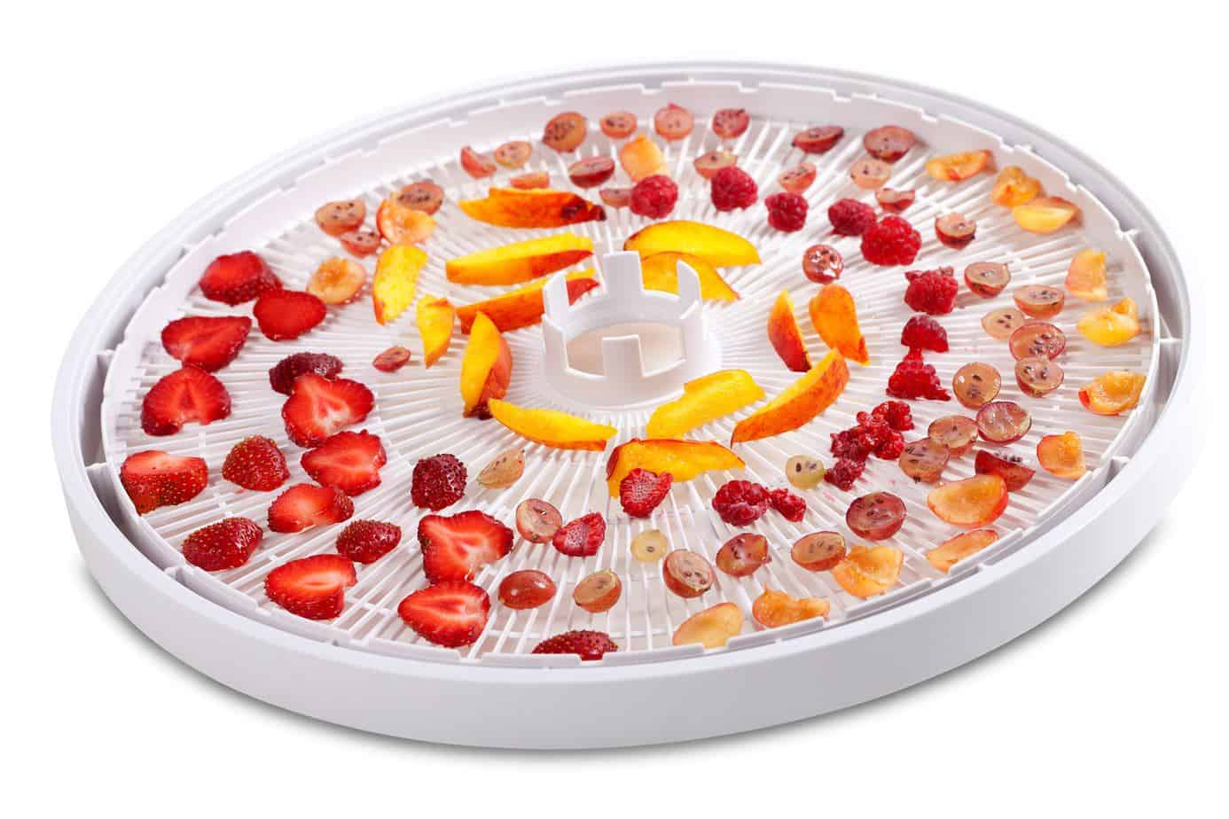 Slices Of Fruits And Berries On Dehydrator Tray