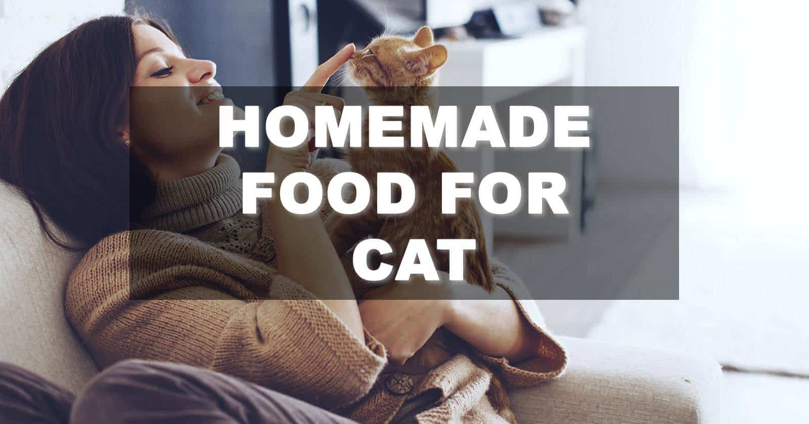 Homemade Food For Cat