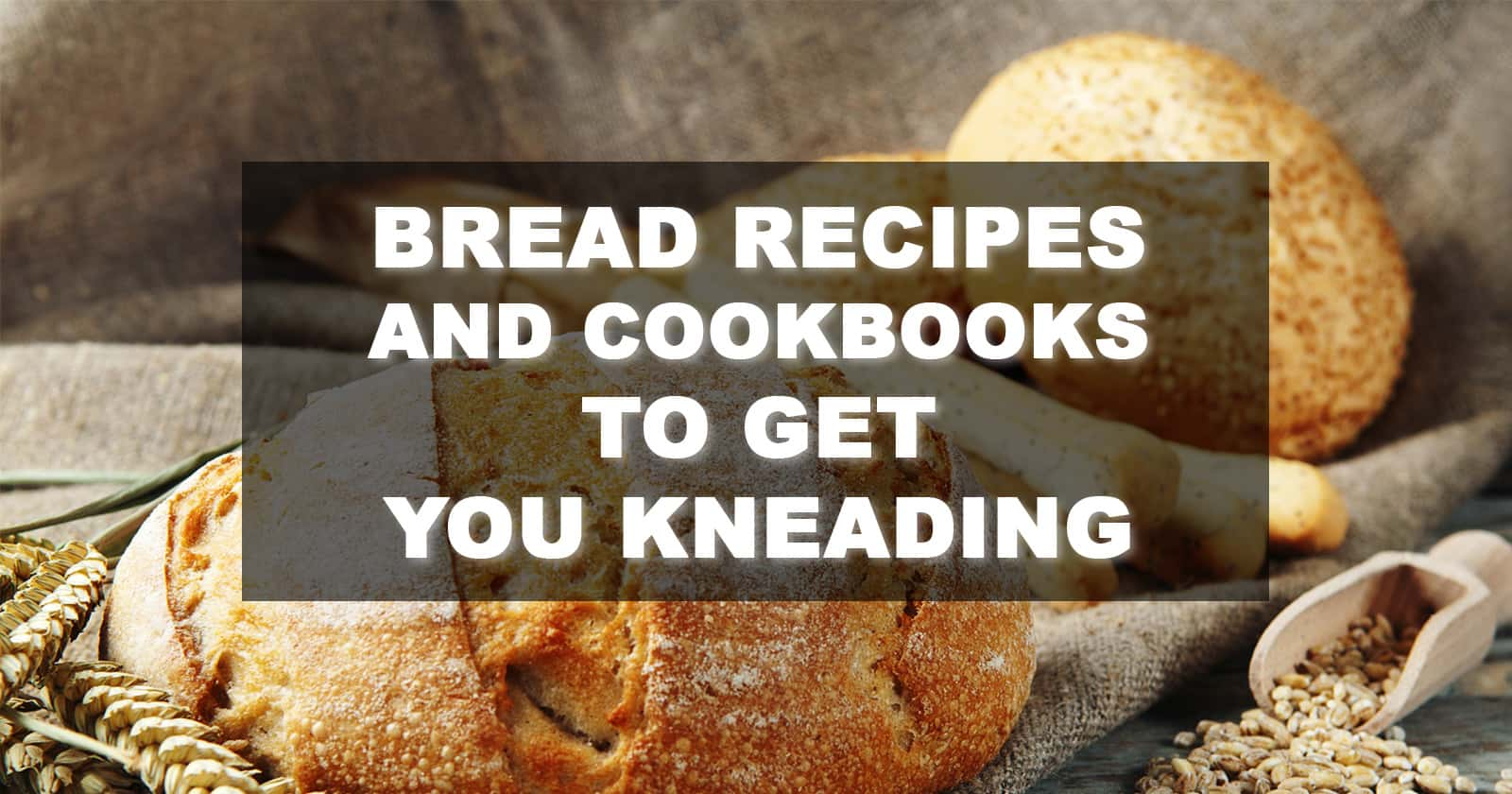 Best Bread Recipes and Cookbooks
