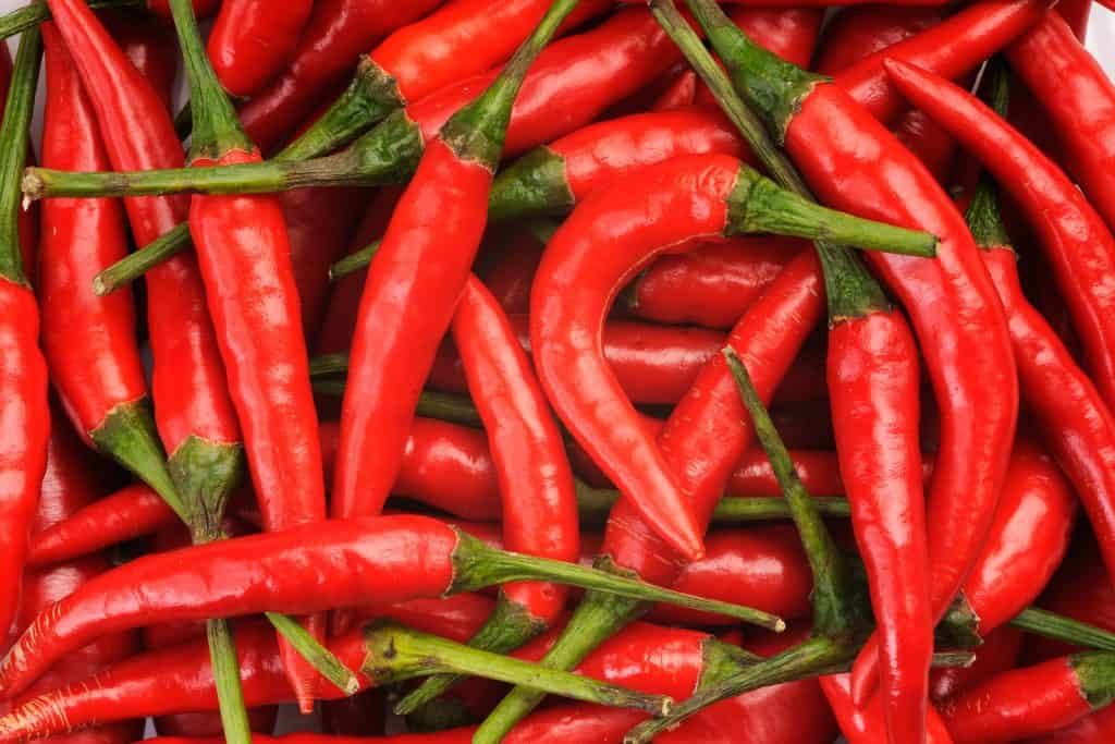 What is chilli