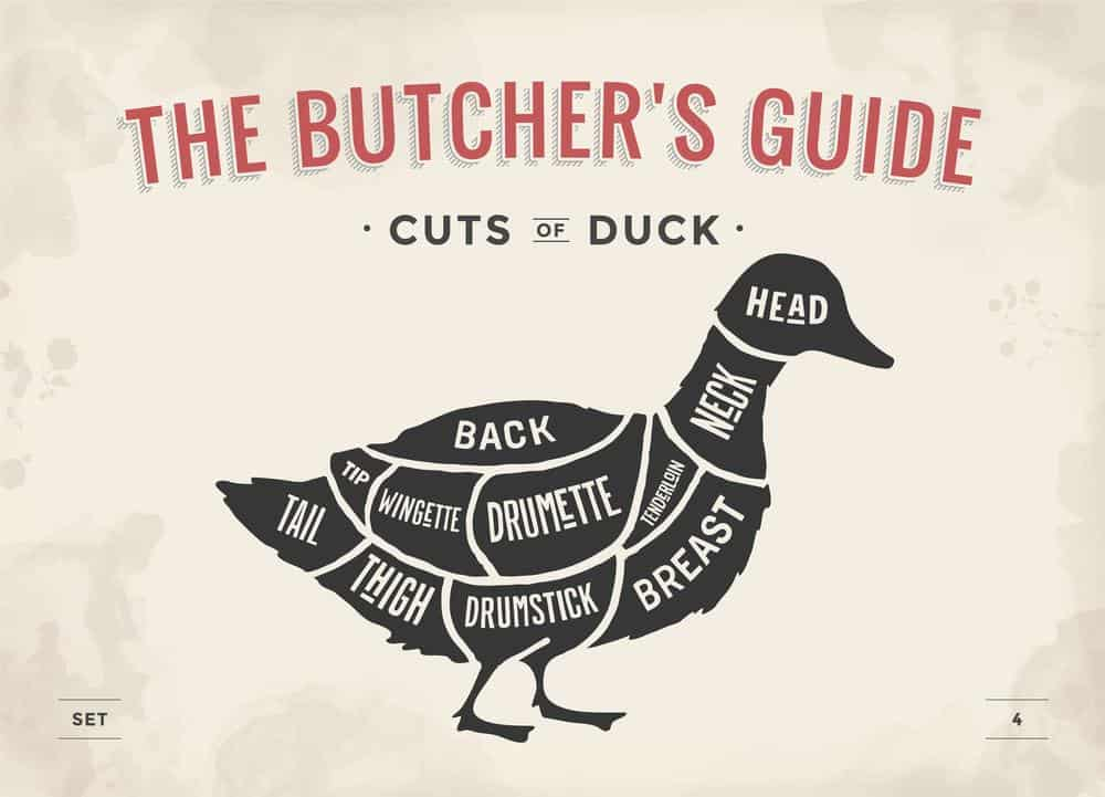Cuts of duck