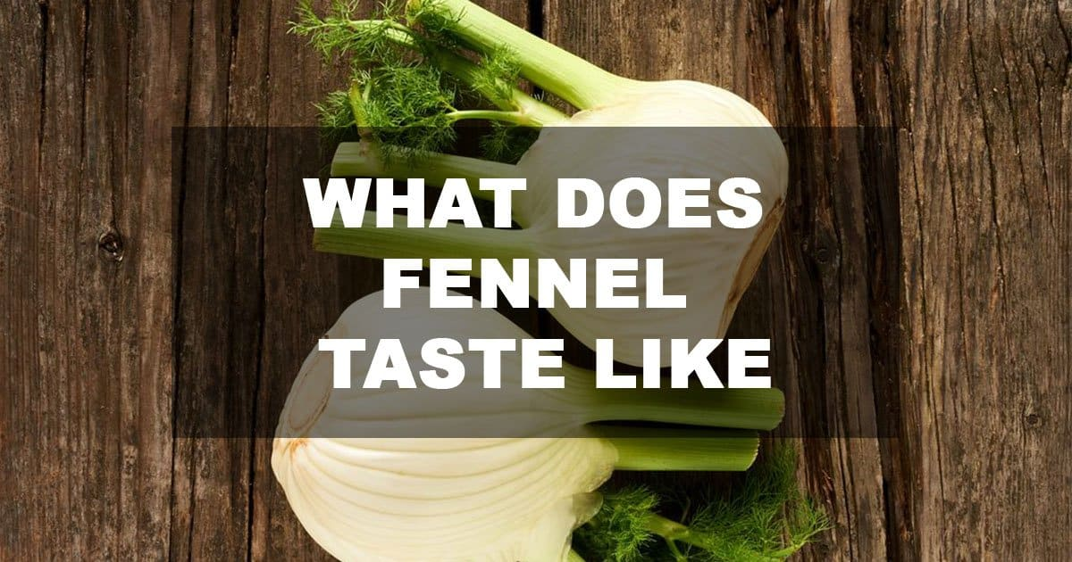 what does fennel taste like